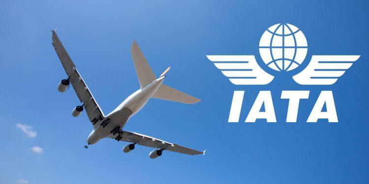 IATA 2020'de yüzde 6 büyüme bekliyor